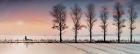 Peter North_Midwinter Sunrise