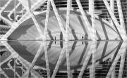 Keith Truman_Reflections and Shadows