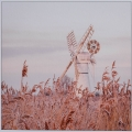 Jenny Collier_Windmill at Thurne