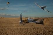 Bob Dennis_Crashed Plane