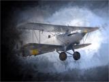 Bob-Dennis_Stormy-Flight