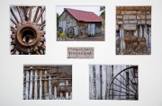 Ian-Tulloch_The-Old-Shed
