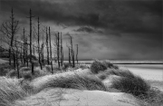 Keith Truman_Newborough-Storm. Commended, Black & White LPOTY 2020