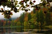 Mike James_Autumn-Colours