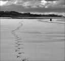 pam-aynsley_solitude