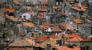 Peter-North_Red-Roofs
